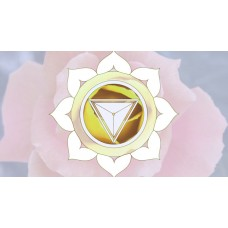 Create Divine Miracles Accelerated Light Healing Miracle Transmissions - 6 Video Series